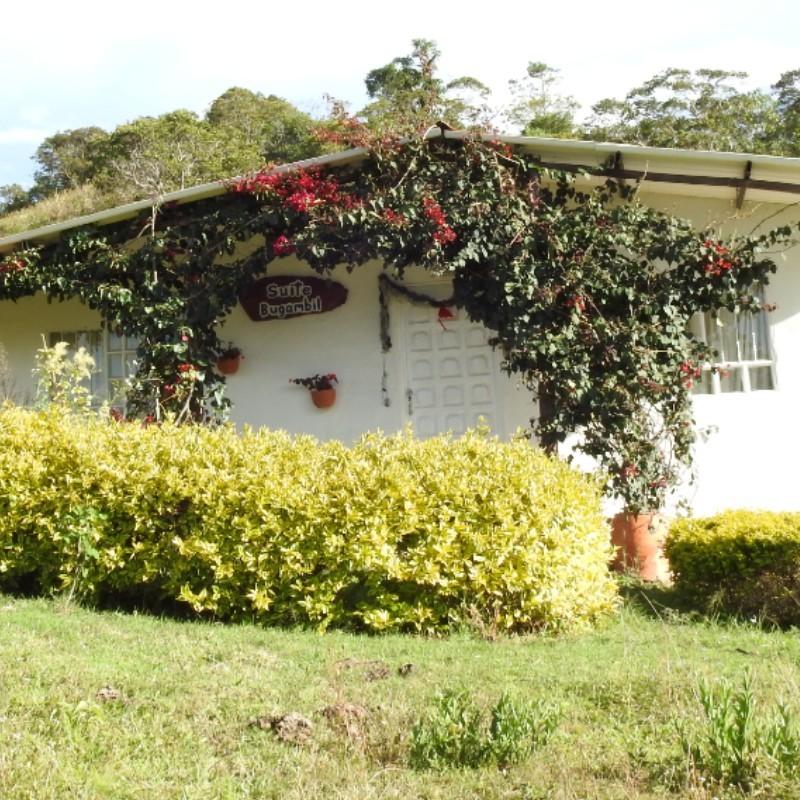 cabana-villa-rouse.jpg